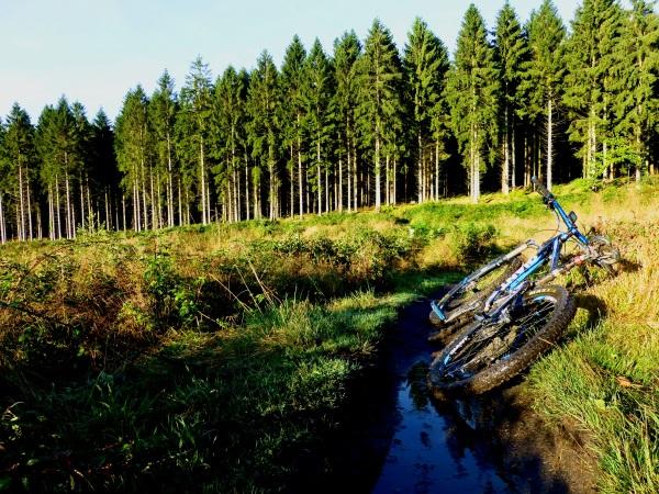 The Freeminer Trail
