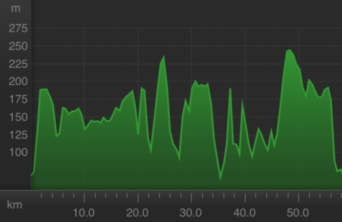 Strava route profile