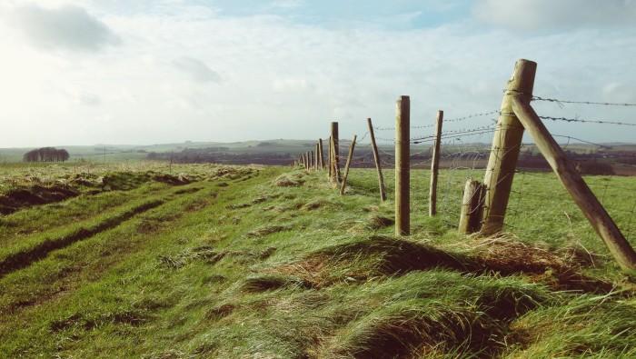 Near Avebury Wiltshire, Ridgeway